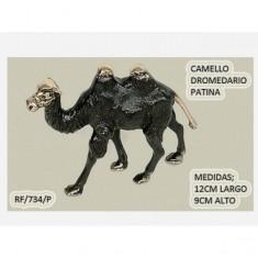 Camello patina
